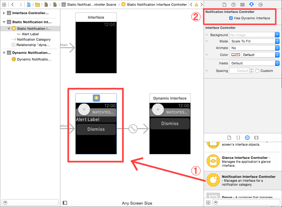 ①interface.storyboardに、Notification Interface Controllerを配置②Has Dynamic Interfaceにチェックを入れ、Dynamic Interfaceを作成